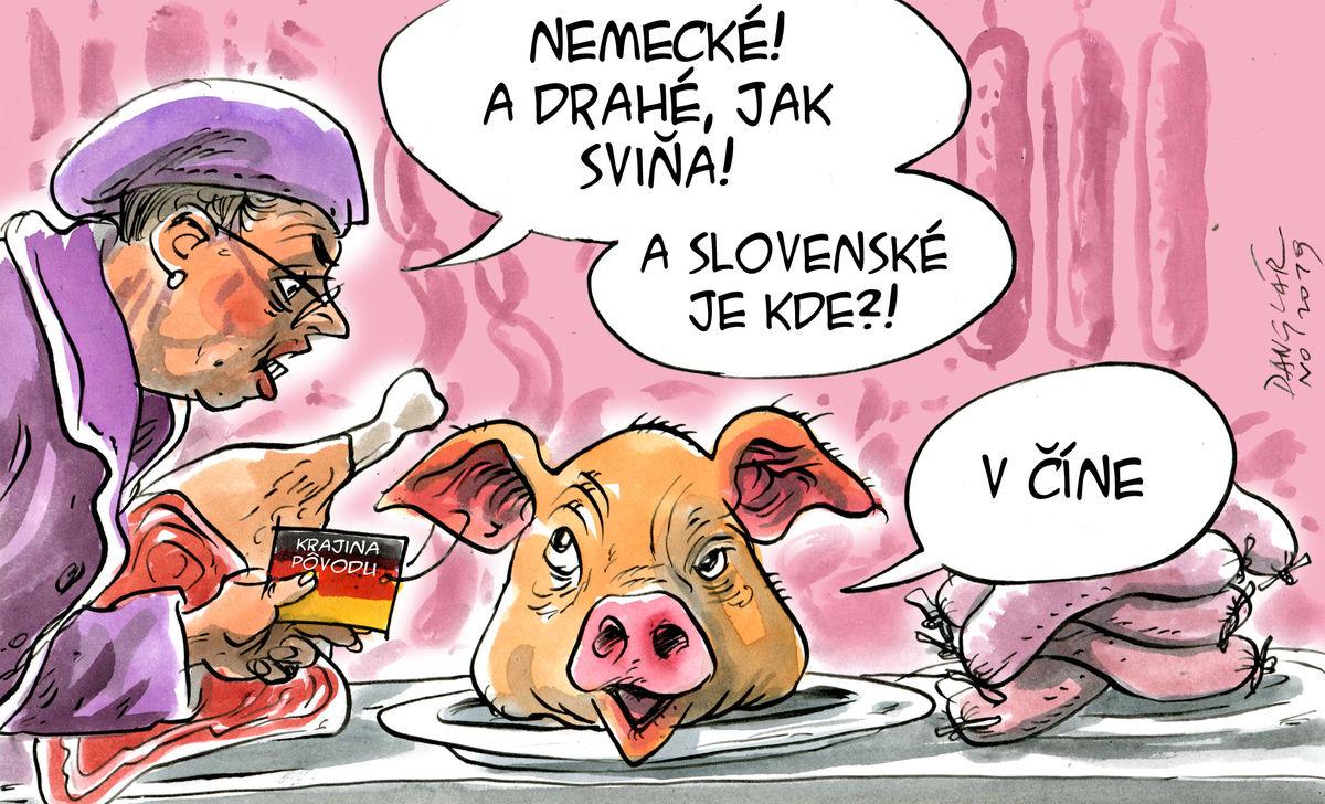 Karikatúra 30.11.2019