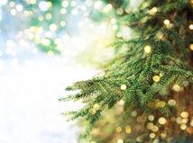 ihličie, vianočný stromček