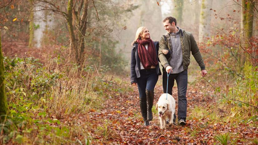 prechádzka, les, pár, pes