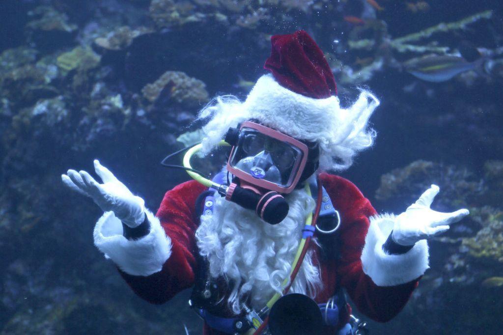 Santa Claus, potápač,