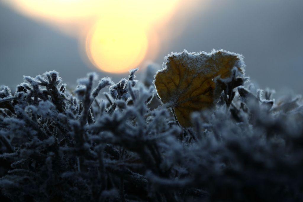 zima, mráz, slnko, príroda, počasie,