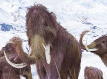 mamut, mamuty