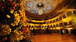 Kvetinová výzdoba v sále Opery SND počas 20. ročníka akcie Ples v opere.