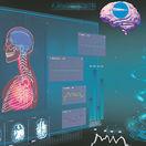 ľudské telo, orgány, CT mozgu