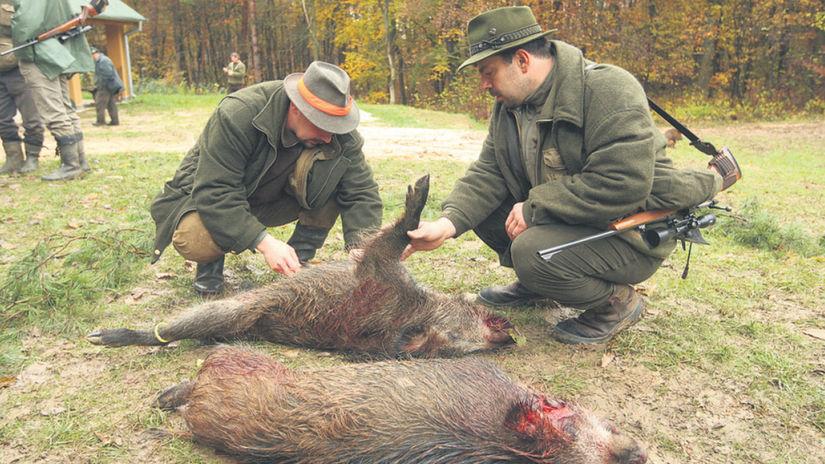 diviak, poľovník, poľovačka