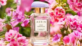 Aerin Wild Geranium