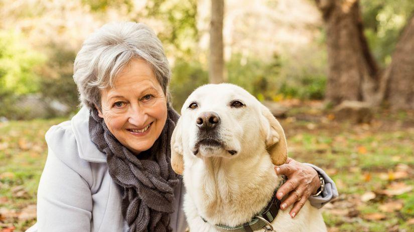 žena, dôchodkyňa, pes, domáce zviera, najlepší...