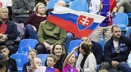 Slovensko, Česko, Davisov pohár