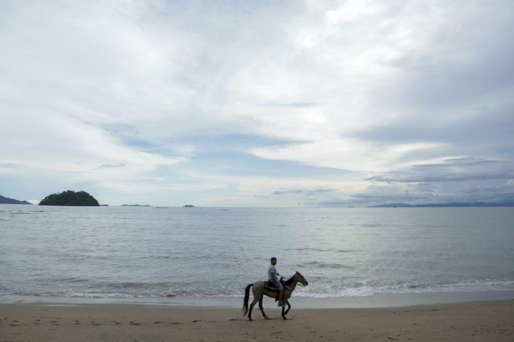 Panama, more, pláž, kôň, piesok,