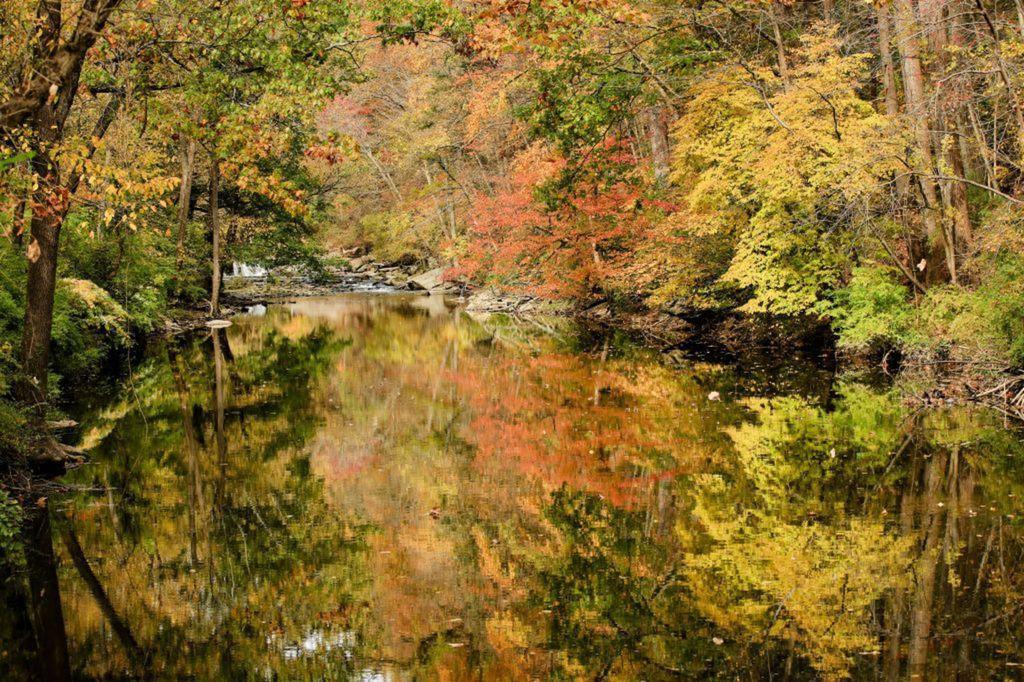 Pennsylvania, jazero, Philadelphia, jeseň, príroda, listy, les, stromy