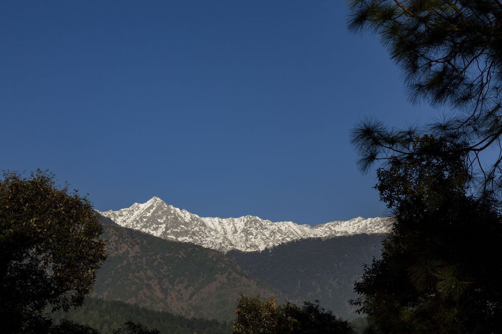 India, hory, Himaláje, Dharmsala