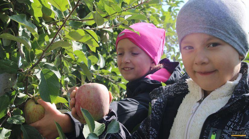 jablká, samozber, deti