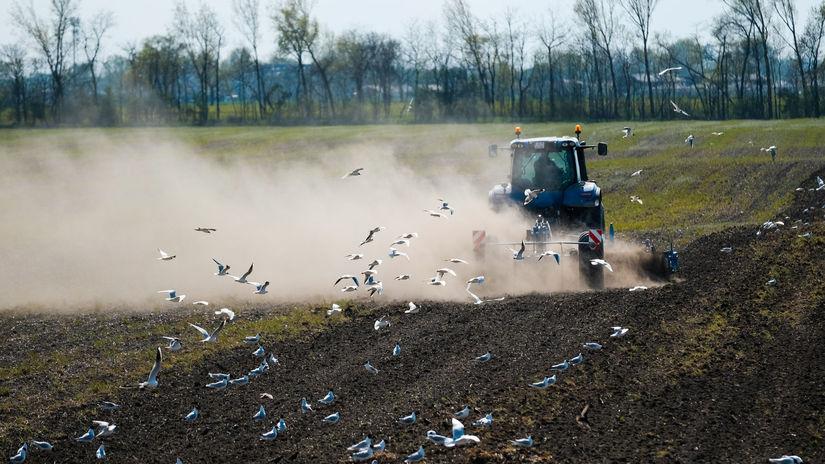 počasie , sucho poľnohospodárstvo
