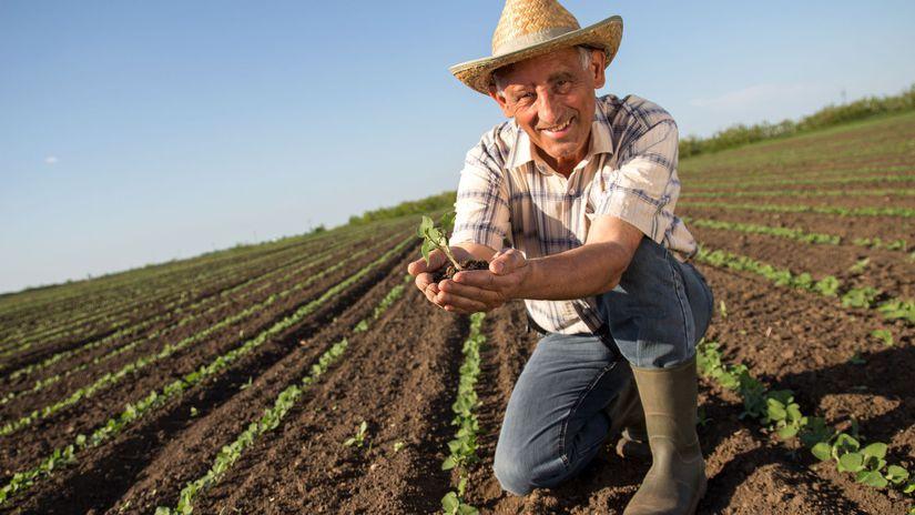 pole, farmár, dôchodca, úsmev, úroda