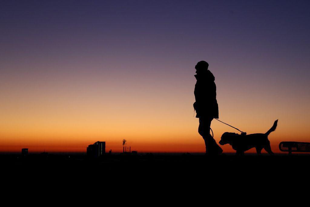 pes, venčenie, zviera, prechádzka, Mníchov