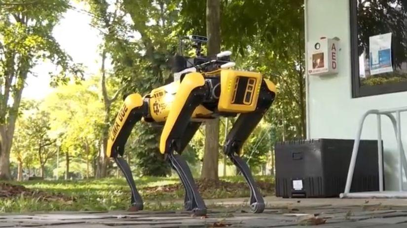 Boston Dynamics, robot