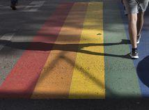 Homofóbia
