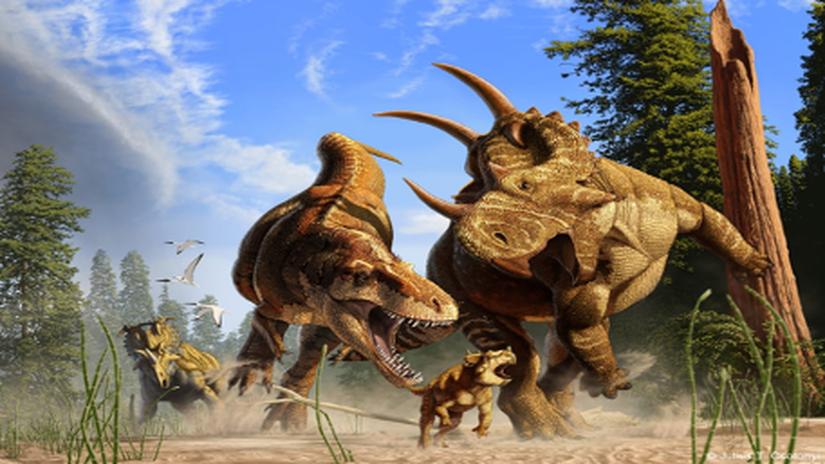 t-rex news relsease
