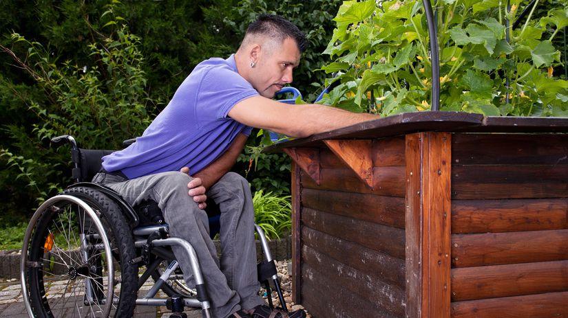 invalidný vozík, muž, práca, záhrada, príroda
