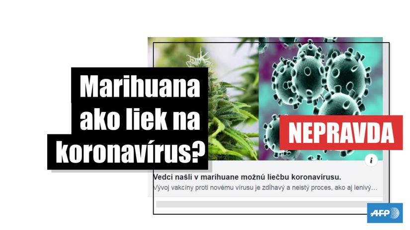 SR marihuana koronavírus COVID-19 HOAXAFP
