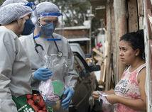 vírus, Brazília