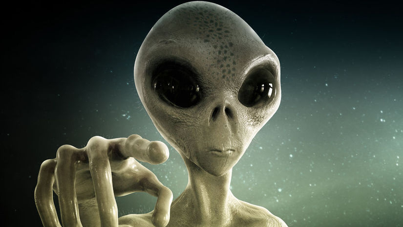 mimozemstan