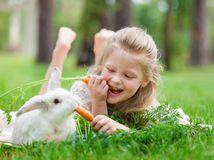 dieťa, zajac, králik, kŕmenie, mrkva, zábava