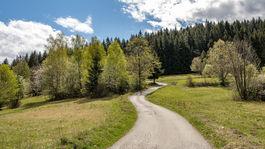 Živčáková, Kysuce, príroda, asfaltka, stromy, pútne miesto