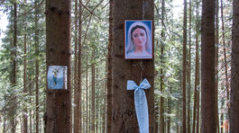 Živčáková, Panna Mária, les, stromy, obrázky svätých
