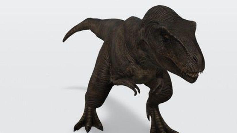 Tyranosaurus Rex, Google,