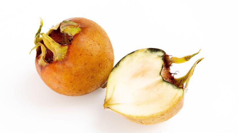mišpuľa, ovocie, plody