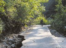 Muráň, rozbitá cesta, les, Štefan Vaľo
