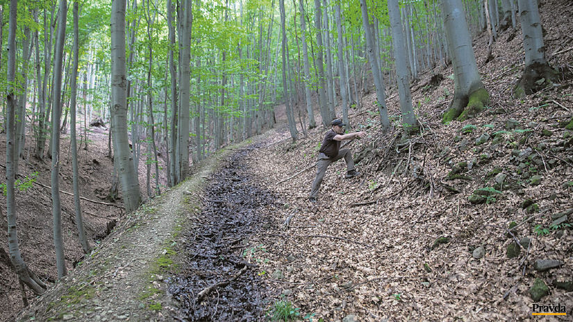 Štefan Vaľo, lesná cesta, odvodnenie, les