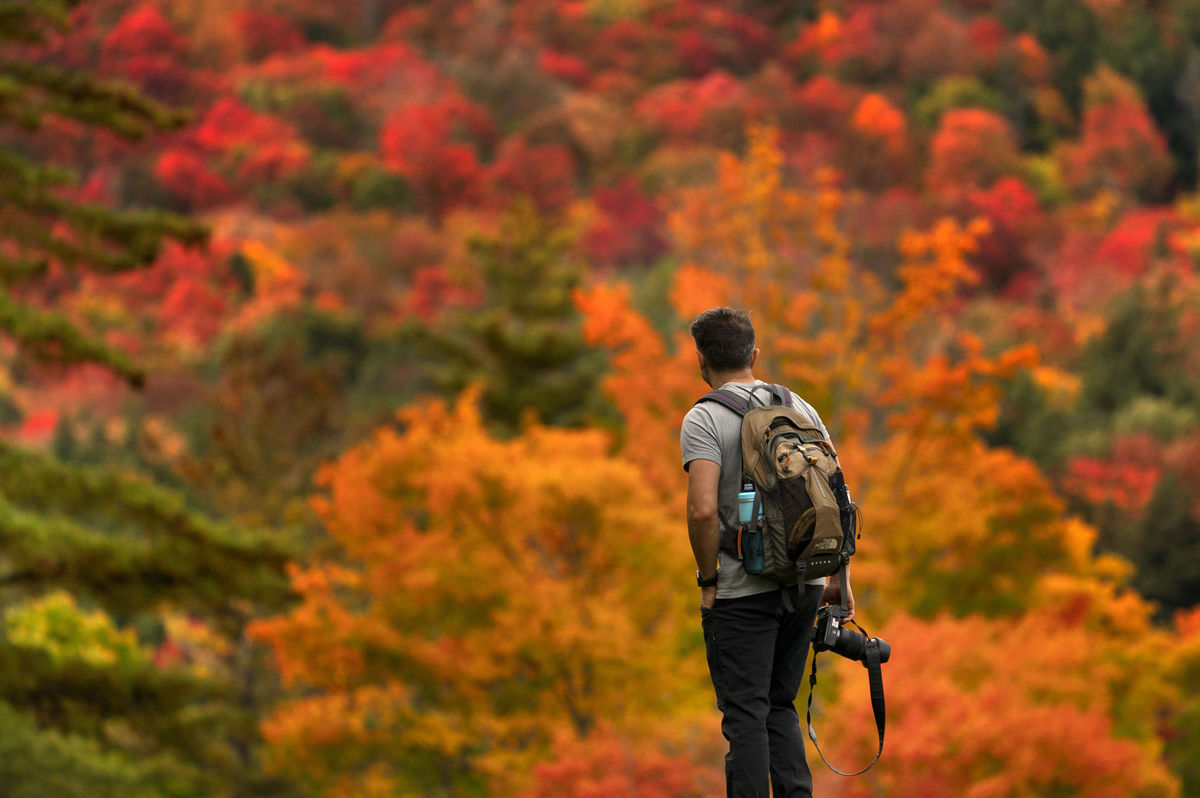 Adirondack, jeseň, les, príroda, turista, fotograf, fotoaparát, fotenie, výhľad, cestovanie, ruksak,