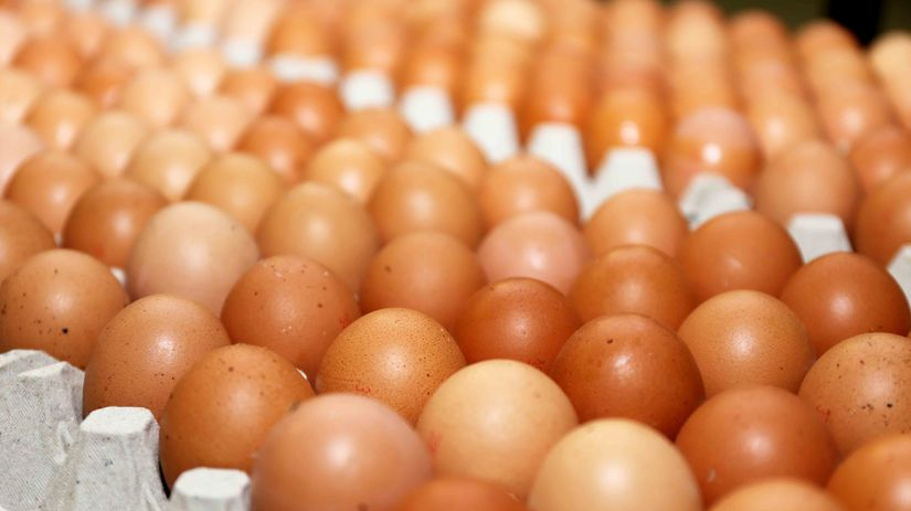 vajcia, hnedé vajcia, vajíčka