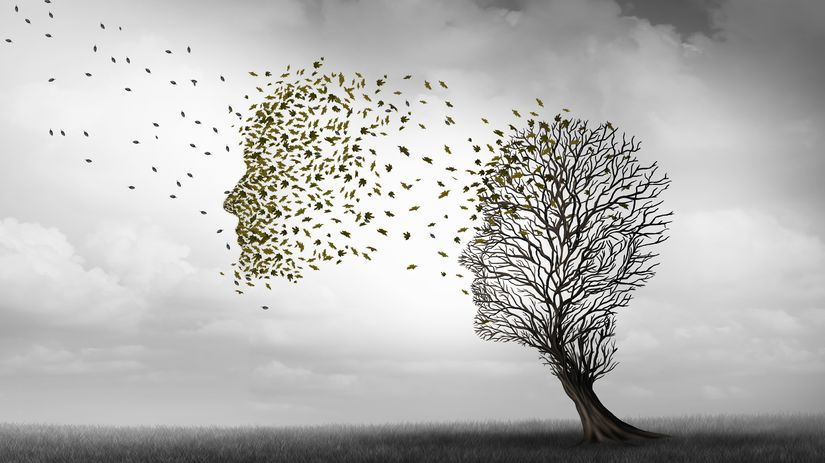 Alzheimer, zabúdanie, jeseň, tvár, strom