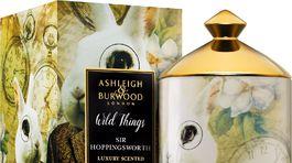 Sir Hoppingsworth z edície Wild Things od britského výrobcu Ashleigh & Burwood London