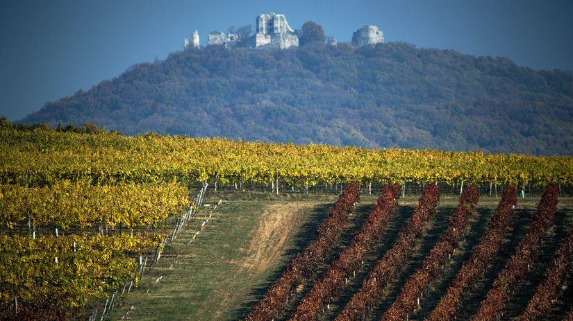 Chateau Topoľčianky, hrad, Gýmeš, vinič
