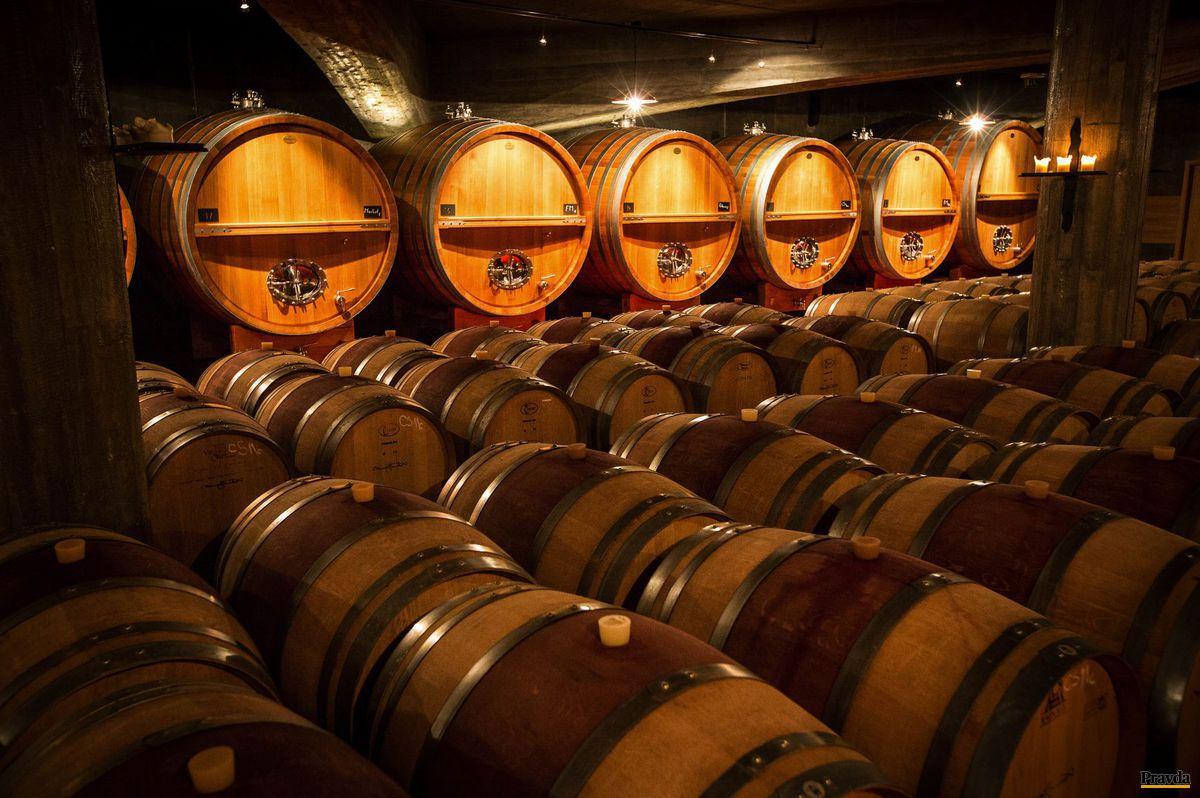 Sudy plné vína, o ktoré je obrovský záujem a v prestížnych degustáciách prekonávajú napríklad aj francúzske vína.