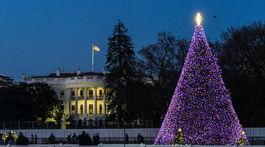 Národný vianočný strom blízko Bieleho domu, Washington