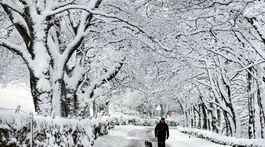 sneh, Británia
