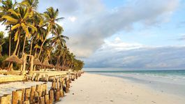Zanzibar, pláž, more, exotika, dovolenka,