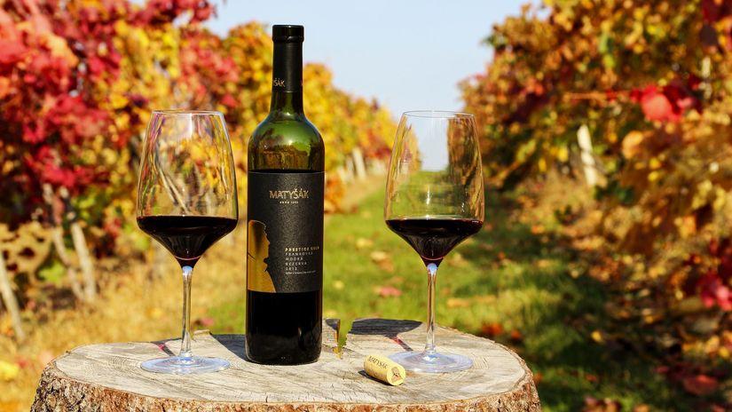 Víno Matyšák, vinič, vinohrad, hrozno
