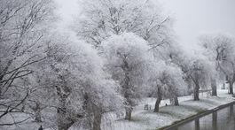 Británia Anglicko počasie zima sneh sneženie