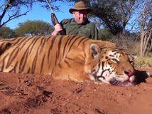 Slovák ulovil v Afrike tigra, hrozí mu päťročné väzenie