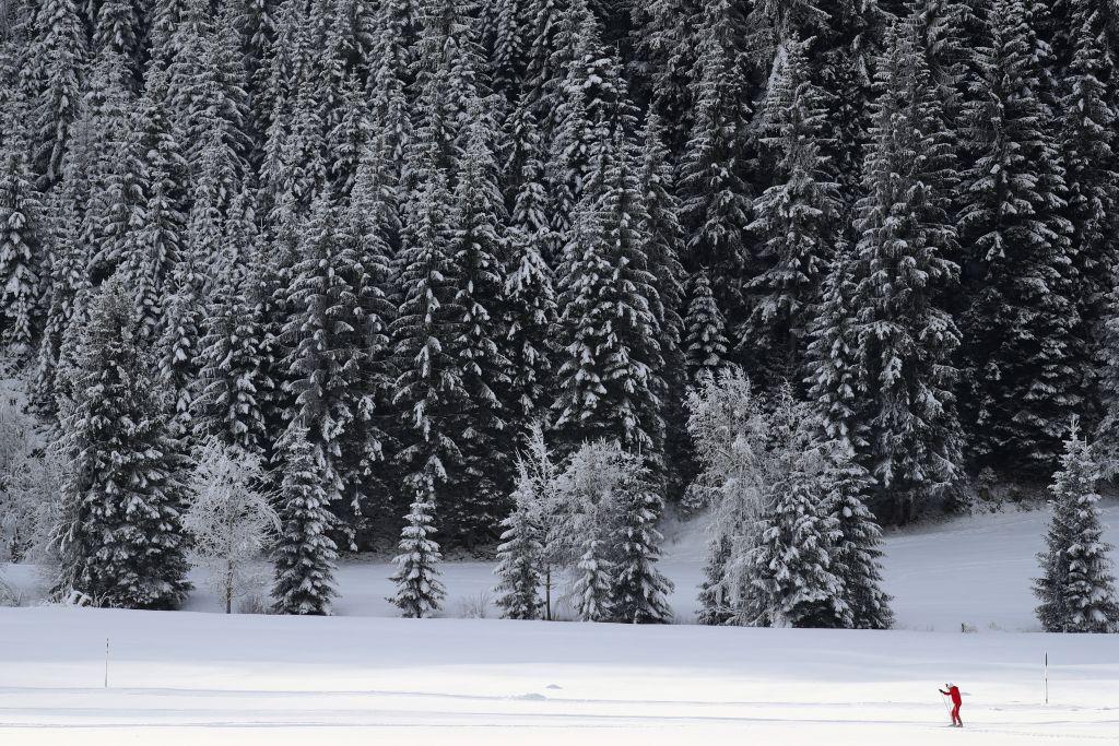 bežkovanie, bežkár, zima, sneh,