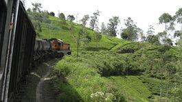 Srí Lanka, čaj, vlak, čajové plantáže, lokomotíva
