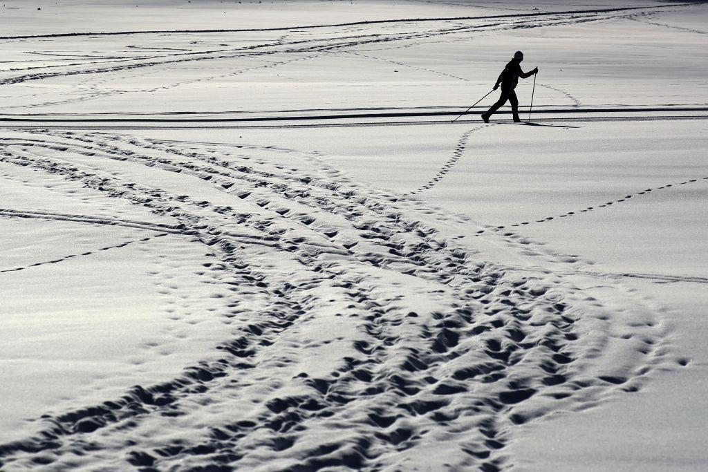 zima, sneh, bežkovanie, šport
