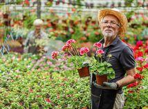 penzista, záhradník, kvetinárstvo, pracujúci penzisti