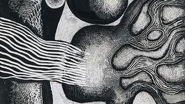 Sigetova Agnesa-Jesenna lyra 1969